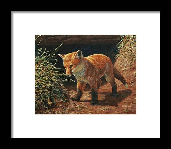 Fox Framed Print featuring the painting Red Fox Pup - Learning by Crista Forest