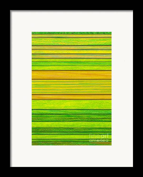 Colored Pencil Framed Print featuring the painting Lemon Limeade by David K Small