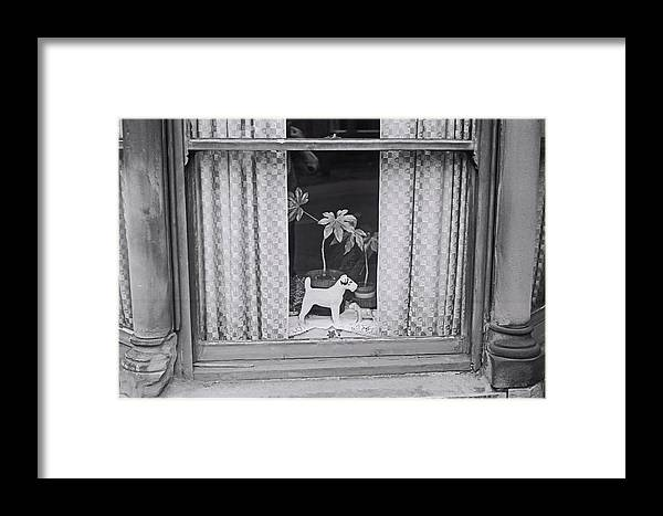 Doggie Framed Print featuring the painting Lenton Boulevard by Charles Stuart