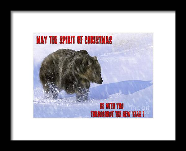 Wildlife Greeting Cards Framed Print featuring the photograph Let It Snow Let It Snow Let It Snow by Wildlife Fine Art