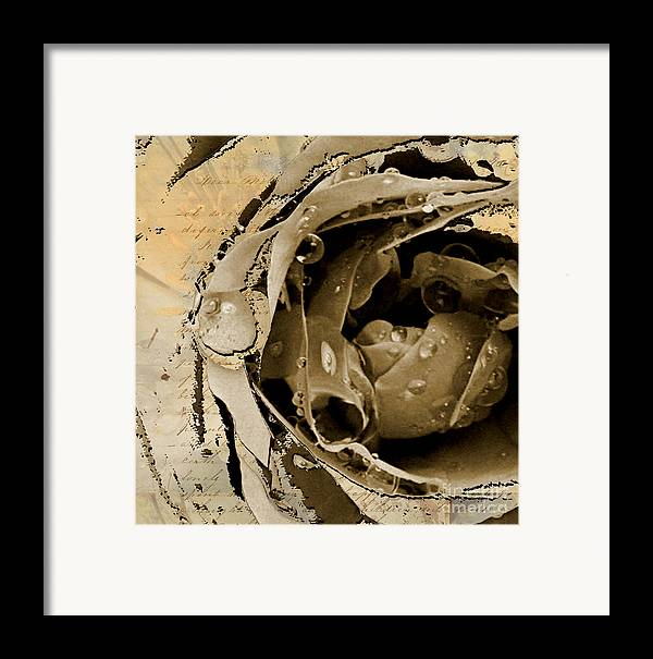 Framed Print featuring the mixed media Life II by Yanni Theodorou