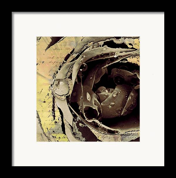 Framed Print featuring the mixed media Life IIi by Yanni Theodorou