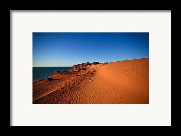 Australia Framed Print featuring the photograph Life by Shari Mattox