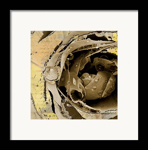 Framed Print featuring the mixed media Life by Yanni Theodorou