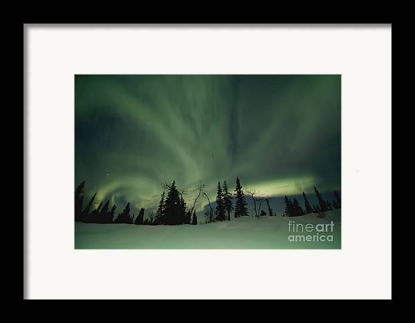 Dawson City Framed Print featuring the photograph Light Dancers by Priska Wettstein
