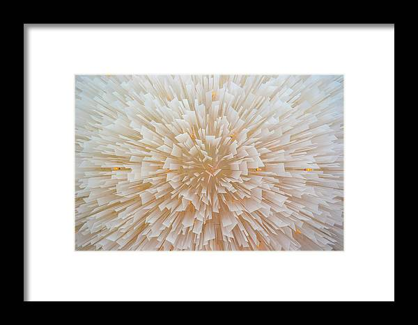 Light Framed Print featuring the photograph Light by Kevin Jarrett