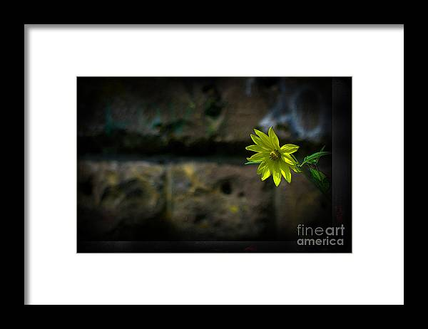 Framed Print featuring the photograph Light On The Dark Side by The Stone Age
