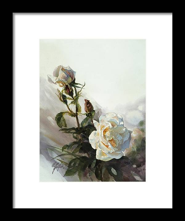 Watercolor Framed Print featuring the painting Light Yellow Rose by Clifton E Hadfield