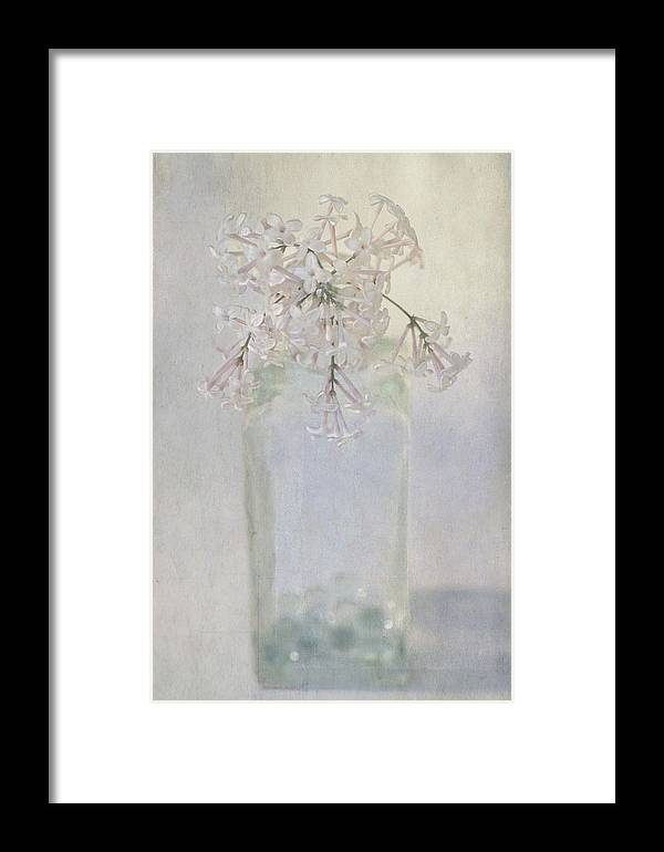 Lilac Framed Print featuring the photograph Lilac Flower by Annie Snel