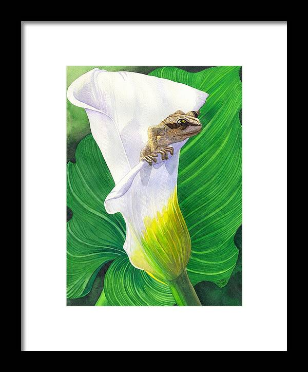 Frog Framed Print featuring the painting Lily Dipping by Catherine G McElroy