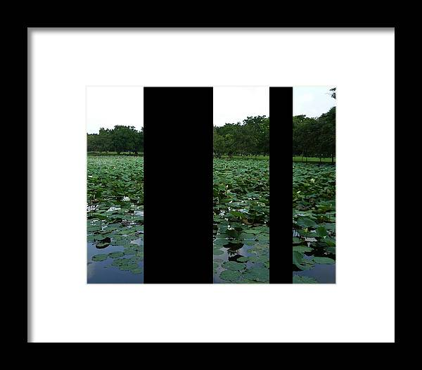 Lily Framed Print featuring the photograph Lily Pond Tri Panel A by Gregory Smith