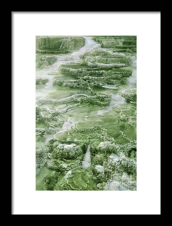 North America Framed Print featuring the photograph Limestone Detail Minerva Springs Yellowstone National Park by Dave Welling