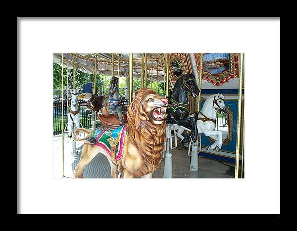 Lion Framed Print featuring the photograph Lion At Liberty by Barbara McDevitt
