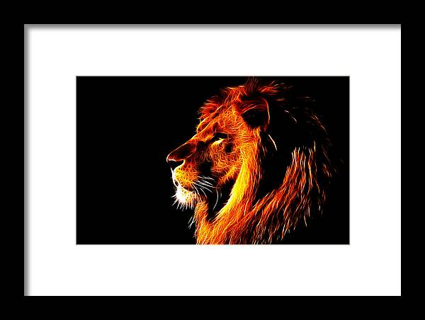 Lion Framed Print featuring the photograph Lion King by Fellow Store
