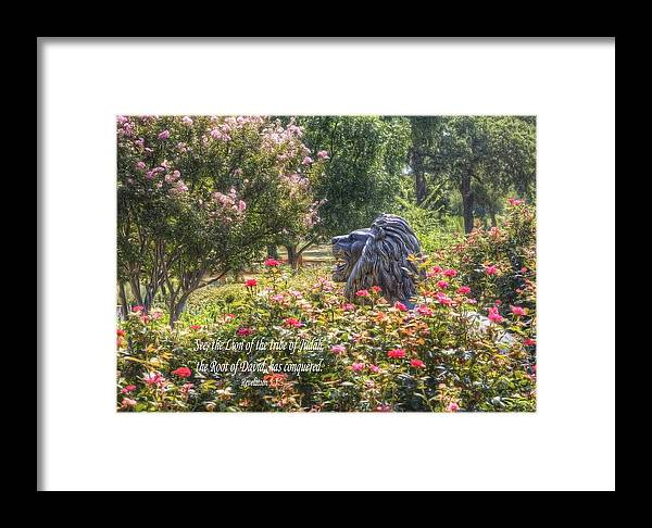 Lion Framed Print featuring the photograph Lion Of The Tribe Of Judah by Cheryl Birkhead