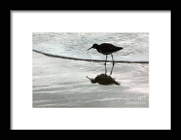 Beach Framed Print featuring the photograph Little Footsteps by Dan Holm