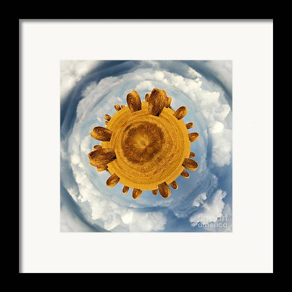 Hay Framed Print featuring the photograph Little Planet Hay Bales by Jane Rix