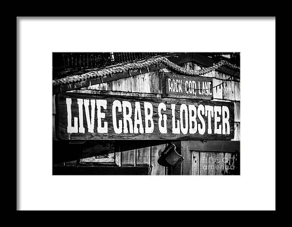 America Framed Print featuring the photograph Live Crab And Lobster Sign On Dory Fish Market by Paul Velgos