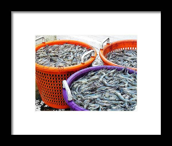 Shrimp Framed Print featuring the photograph Loaves And Fishes by Patricia Greer