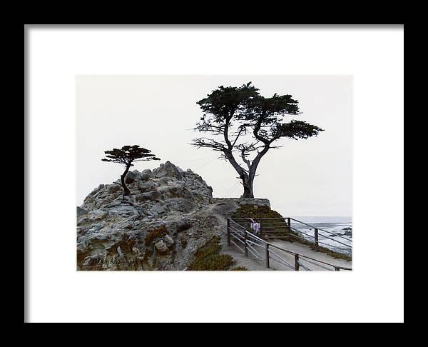 Floyd Snyder Framed Print featuring the digital art Lone Cypress 1970 by Floyd Snyder