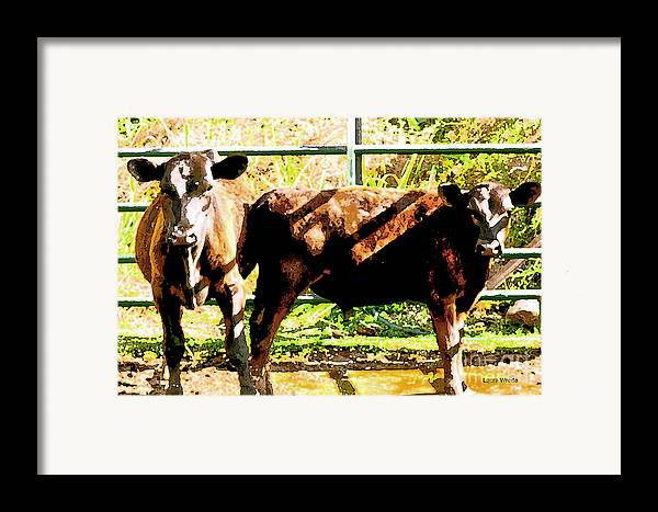 Cow Art Photographs Framed Print featuring the photograph Looking At You by Artist and Photographer Laura Wrede