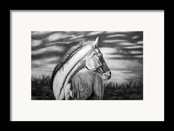 Canvas Framed Print featuring the drawing Looking Back by Glen Powell