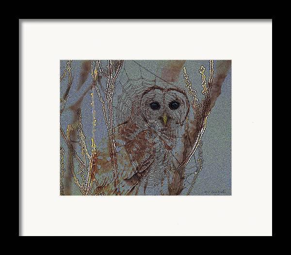 J Larry Walker Framed Print featuring the digital art Looking Through The Web by J Larry Walker