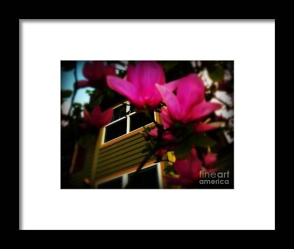 Green Framed Print featuring the photograph Looking up by De La Rosa Concert Photography