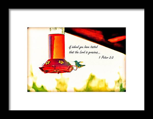 Bird Framed Print featuring the photograph Lord Is Gracious by Reflections by Brynne Photography