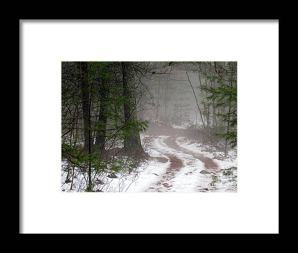 Woods Framed Print featuring the photograph Lost In The Fog by Lili Feinstein