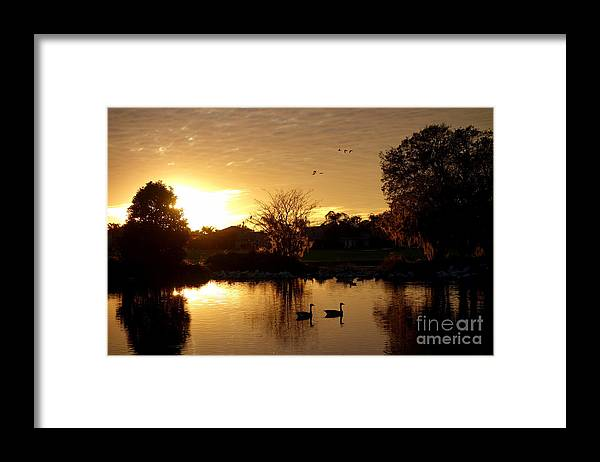 Golf Framed Print featuring the photograph Love is in the air Florida style by De La Rosa Concert Photography