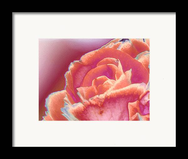 Rose Framed Print featuring the digital art Love Story - Forever by Wendy J St Christopher