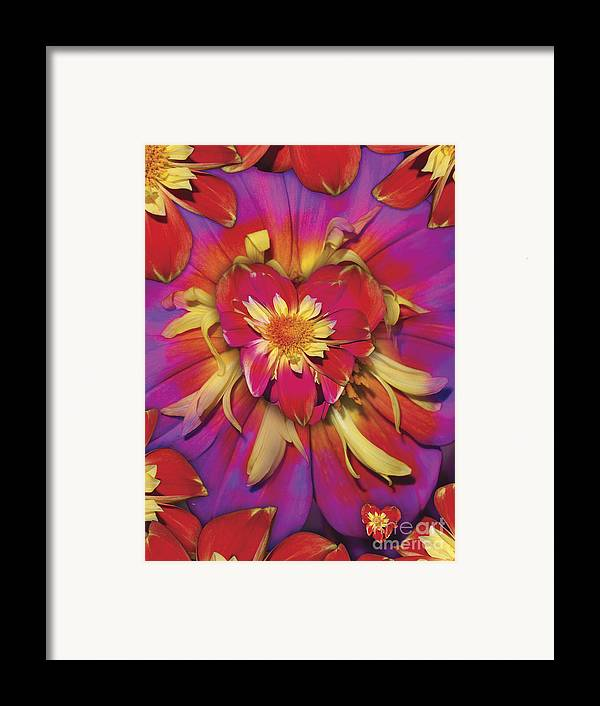 Abstract Framed Print featuring the digital art Loveflower Orangered by Alixandra Mullins