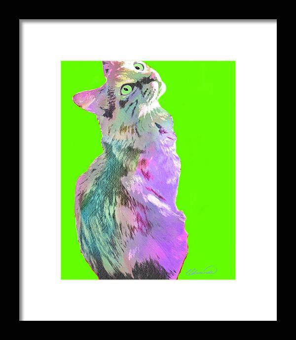 Cat Framed Print featuring the digital art Lucky by Cindy Edwards