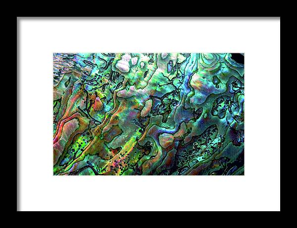 Mollusk Framed Print featuring the photograph Luxury Background Of Blue Abalone Pearl by Elen11