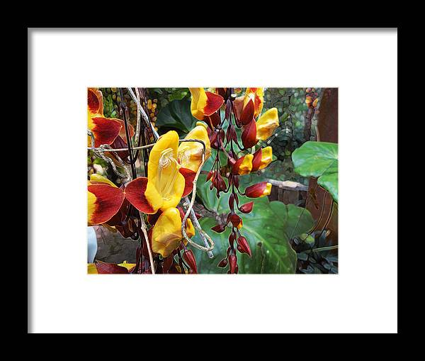 Nature Framed Print featuring the painting Madikiri - Phool by Syed Suhaib Pasha
