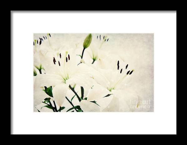 Lily Framed Print featuring the photograph Magic Flowers by Angela Doelling AD DESIGN Photo and PhotoArt