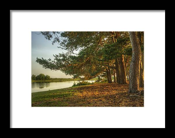 Fantasy Framed Print featuring the photograph Magical Fantasy Style Forest Scene With Lake During Sunset by Matthew Gibson