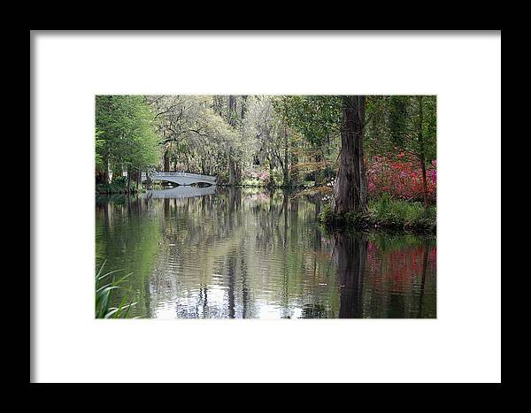 Magnolia Plantation Garden Framed Print featuring the photograph Magnolia Plantation Gardens Series II by Suzanne Gaff