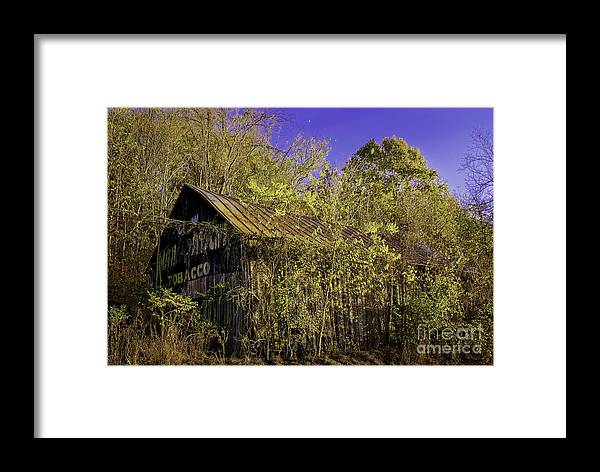 Advertisement Framed Print featuring the photograph Mail Pouch Barn-0107 by Robert Gardner