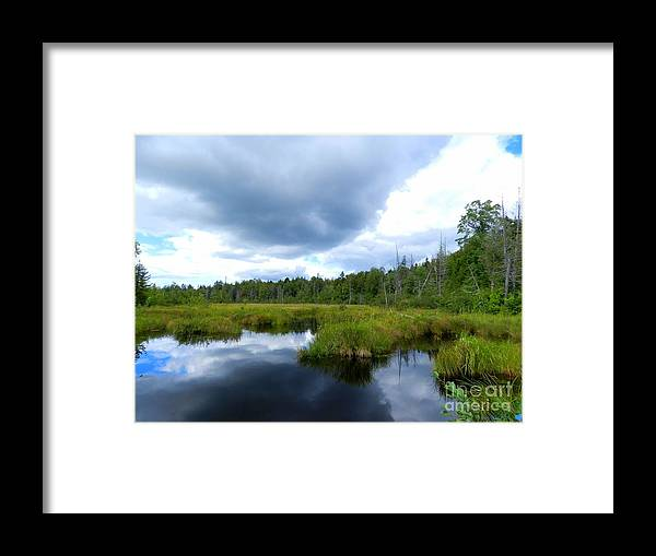 Landscape Framed Print featuring the photograph Maine Pond by Linda Galok