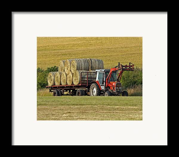 Hay Framed Print featuring the photograph Make Hay When Sun Shines by Paul Scoullar