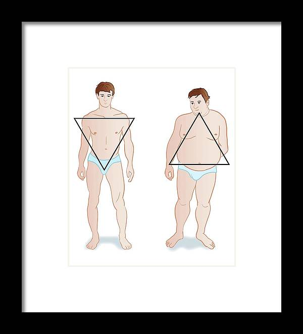 dd38c61f61 Nobody Framed Print featuring the photograph Male Body Shapes by Jeanette  Engqvist