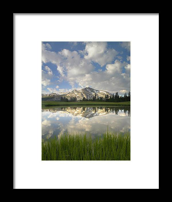 00175345 Framed Print featuring the photograph Mammoth Peak And Clouds Reflected by Tim Fitzharris
