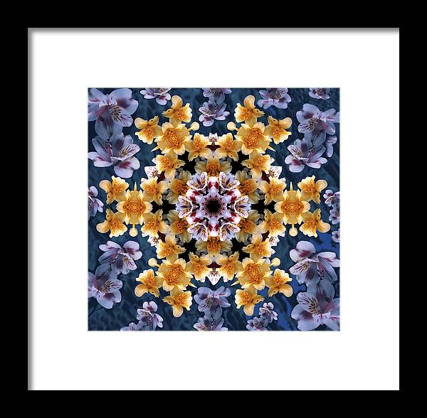 Mandala Framed Print featuring the digital art Mandala Alstro by Nancy Griswold