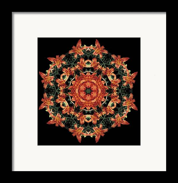 Mandala Framed Print featuring the photograph Mandala Daylily by Nancy Griswold