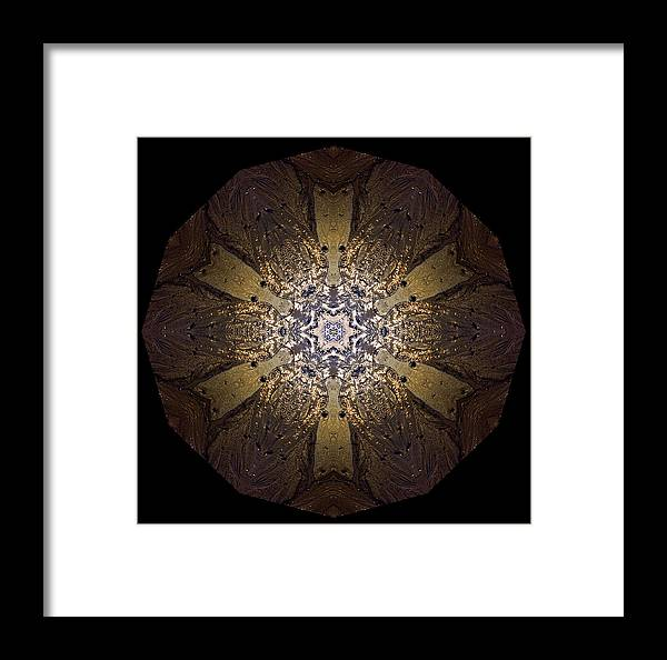 Mandala Framed Print featuring the photograph Mandala Sand Dollar At Wells by Nancy Griswold