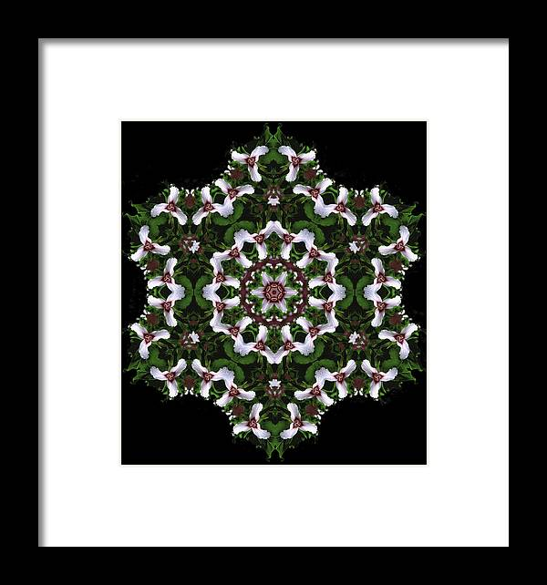 Mandala Framed Print featuring the digital art Mandala Trillium Holiday by Nancy Griswold