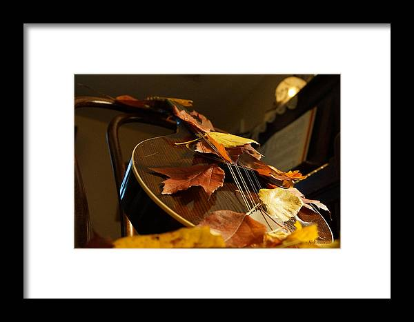 Mandolin Framed Print featuring the photograph Mandolin Autumn 3 by Mick Anderson