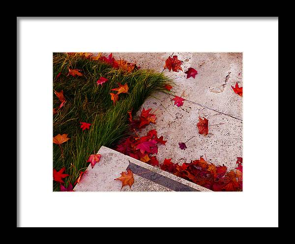 Red Maple Framed Print featuring the photograph Maple Leaf Fall 3 - The Getty by Robert J Sadler